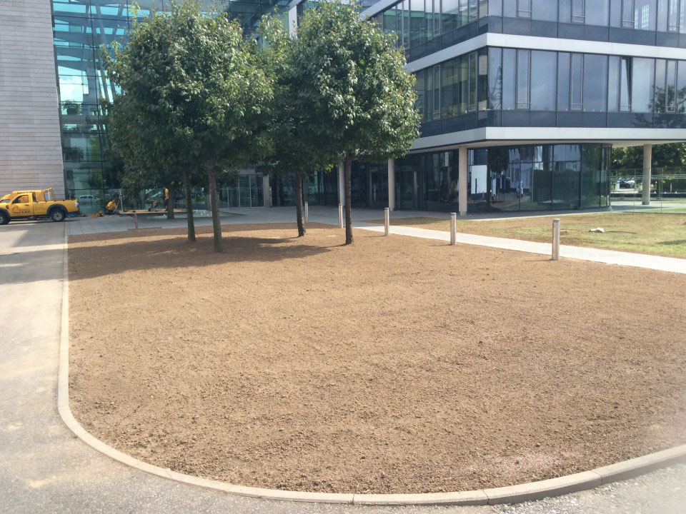 Rasenneuanlage, Fläche gefräst, planiert und eingesät in Neckarsulm - Gartenparadies E. + L. Schmalz GbR