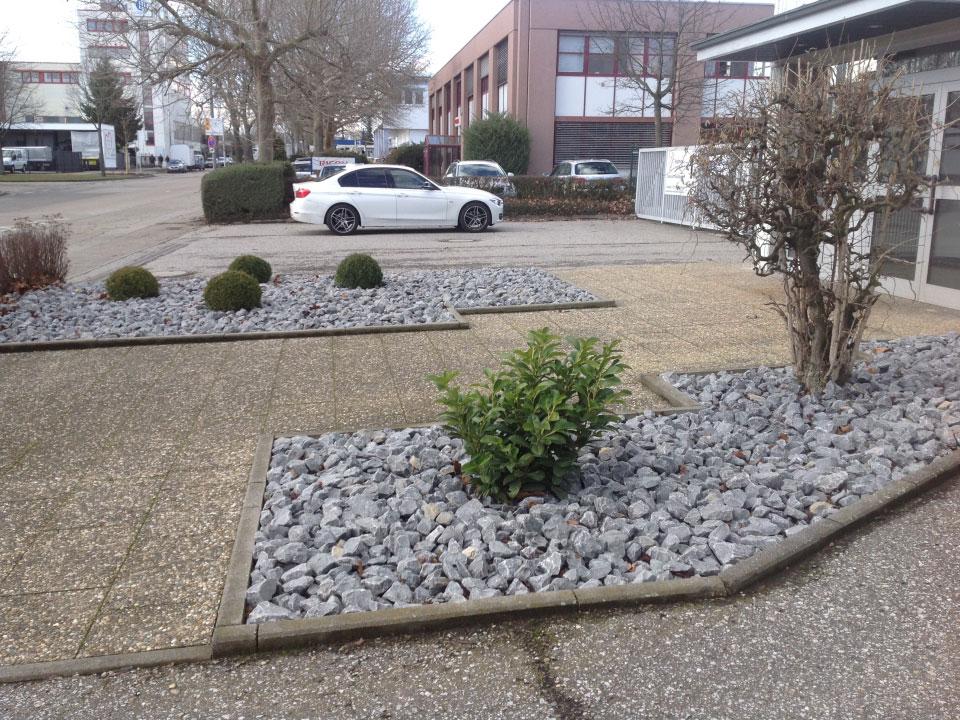 Steinbeete neu angelegt und bepflanzt in Heilbronn-Böllinger Höfe - Gartenparadies E. + L. Schmalz GbR